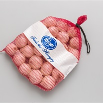 onions - knitted net bag